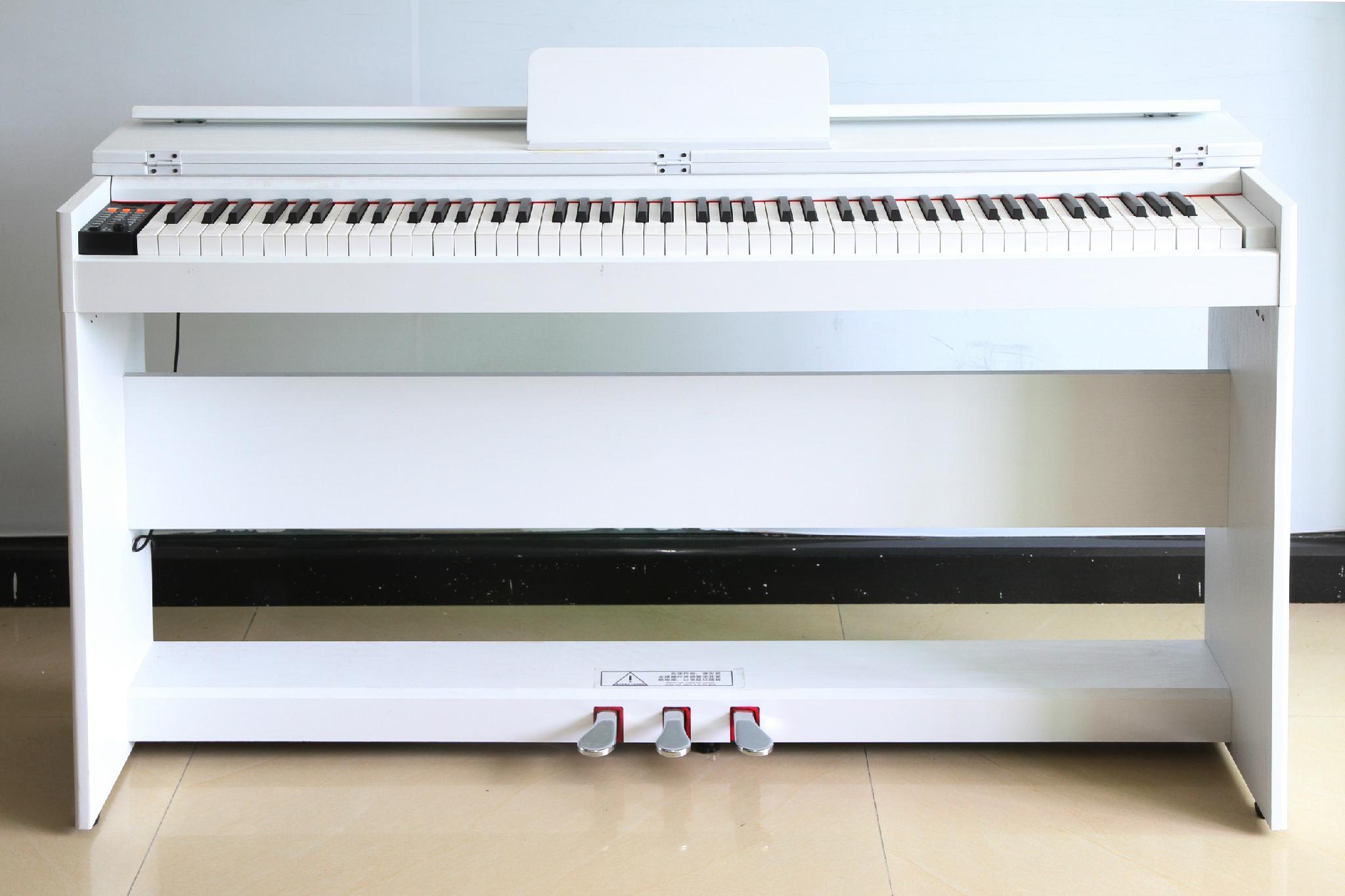 莱恩电钢琴 5