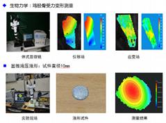 显微数字散斑全场应变测量系统