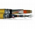 Logging cable-Modified polypropylene insulated Logging cable 2