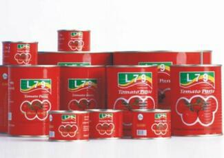 tomato paste canned brix 28-30% Ketchup 1
