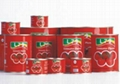tomato paste canned brix 28-30% Ketchup