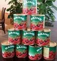 tomato paste canned brix 28-30% Ketchup 2
