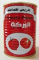 organic canned tomato paste from China Tomato Sauce 2