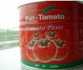 Chinese canned tomato paste in sauce canned tomato paste 0.3kg 4