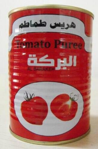 Chinese canned tomato paste in sauce canned tomato paste 0.3kg 1