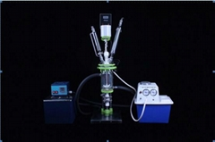 Speed-adjustable Glass Reactor JQ1-5L