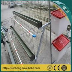 chicken layer cage