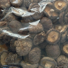 Dried Smooth Shiitake Mushroom