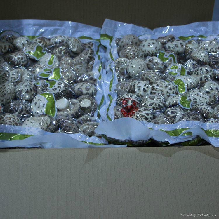 Dried White Flower Shiitake Mushroom 2