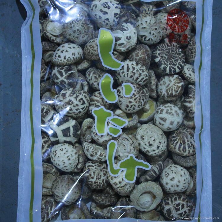 Dried White Flower Shiitake Mushroom 3