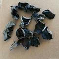 Dried Black Fungus Mushroom 3