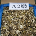 Factory Price Wild Dried Boletus Edulis Porcini Mushroom Slices in Bulk