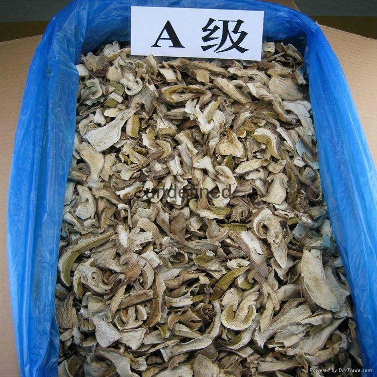 Factory Price Wild Dried Boletus Edulis Porcini Mushroom Slices in Bulk 2