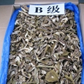 Factory Price Wild Dried Boletus Edulis Porcini Mushroom Slices in Bulk 3