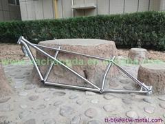 titanium bike frame tandem custom made in china with taper head tube