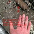 PVC Coated Ga  anized Hexagonal Steel