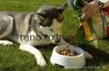 狗粮设备 3