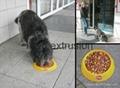 狗粮设备 4