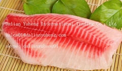 FROZEN TILAPIA FILLETS(FARMED)