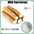 100% Pure Wild Yam Extract Diosgenin CAS