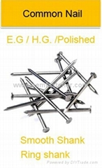 common nails iron wire n