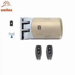 Easy Installation 433MHz Wireless Door Lock Include Remote Contro