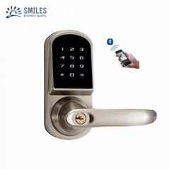 Keyless Entry Security Bluetooth Door Lock With Touchscreen Password