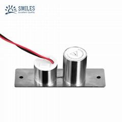 Concealed Install Mini Electric Drop bolt Door Lock