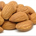 High Grade Almond Nuts / Sweet Almond Nuts