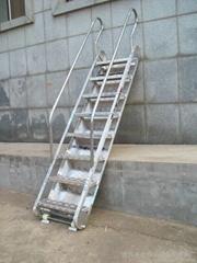 广东博贸铝合金登船梯