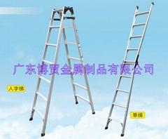 廣東博貿直馬梯