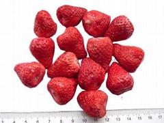 Freeze Dried Strawberry