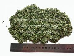 Freeze Dried Basil