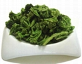 Freeze Dried Broccoli 1