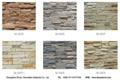 Reef rock face facade stone wall