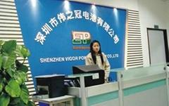 Shenzhen Vigor power battery Co.,Ltd