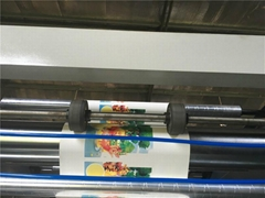 6 Color  Non woven Flexographic Printing Machine