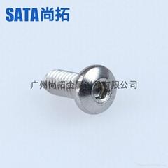 304不鏽鋼內六角圓杯螺釘