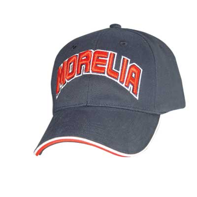 Wholesales Customized Logo Baseball Hat,Hat  005