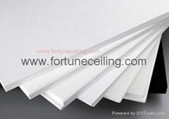 Fiberglass Ceiling/board