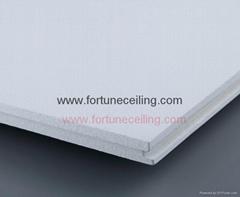 concealed Fiberglass Ceiling/board