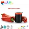 天然辣椒红色素 1