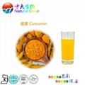 natural food color curcumin pigment