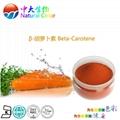 天然食品着色劑β-胡蘿蔔素 3
