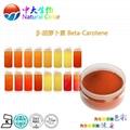 天然食品着色劑β-胡蘿蔔素 4