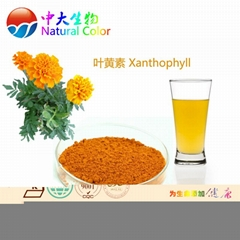 natural food colour lutein pigments