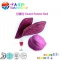 natural food colour/color purple sweet