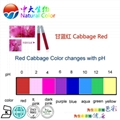 natural food dye cabbage red supplier/factory 2