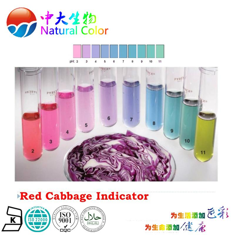 natural food dye cabbage red supplier/factory 5