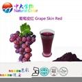 廠家直銷天然食品着色劑葡萄皮紅